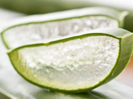 Organic Aloe Vera Powder 100g