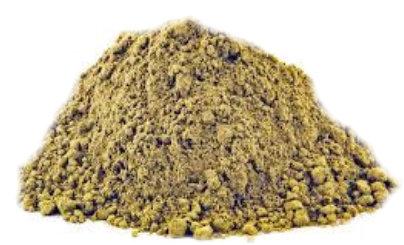 Bladderwrack Powder 50g or 100g