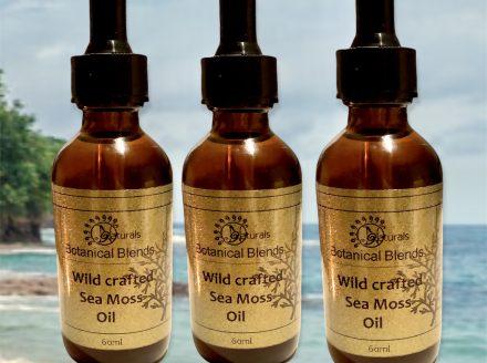 Organic Wild Crafted Sea-moss Oil